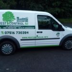 Pest Control NI – Bird proof your home