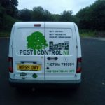 Pest Control NI – Specialists in pest control!